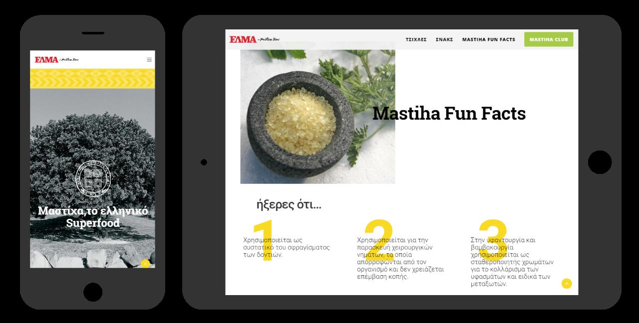Mdesigners-Elma-website-Devices