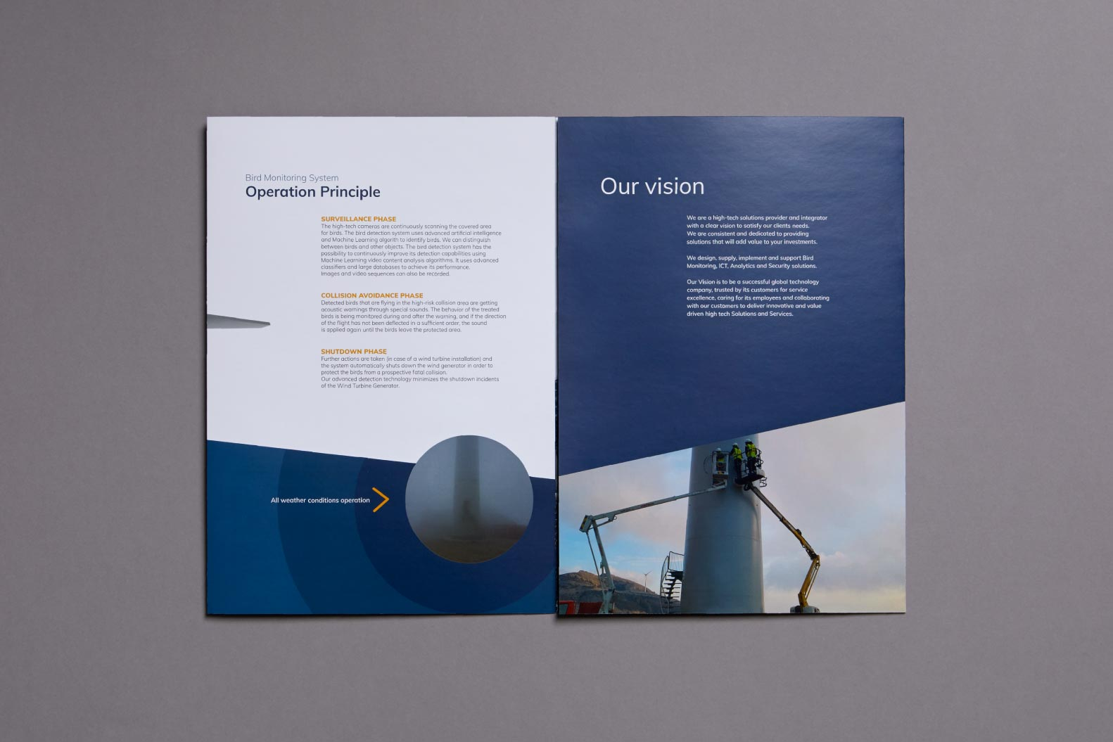 Mdesigners-digisec-brochure-design-bird-monitoring-system-4